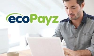ecopayzオンライン登録手段